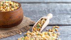 Dile sí a las proteínas vegetales por sus beneficios a la salud