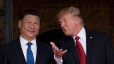 Por qué Trump estaría tan optimista con respecto a Xi Jinping y China