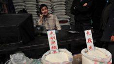 ¿Cómo identificar el arroz falso que proviene de China?