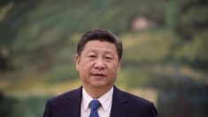 Midiendo la fuerza política de Xi Jinping