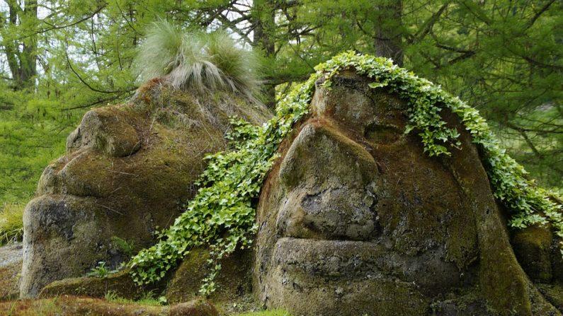 Hadas y duendes: cuando una realidad se convierte en fantasía