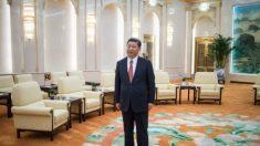Xi Jinping da el 'primer paso' para controlar el aparato de seguridad nacional de China