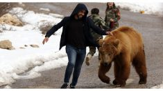 9 seres humanos extraordinarios que dan su vida por el reino animal. ¡Conviven con temibles criaturas!