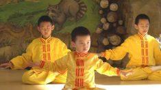 """""""Esto es lo mejor del mundo"""": historias de practicantes de Falun Dafa"""
