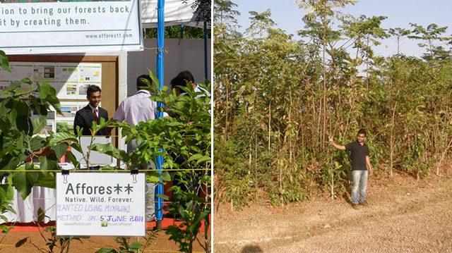 Su amor por la naturaleza lo llevan a plantar 85 bosques en 28 ciudades