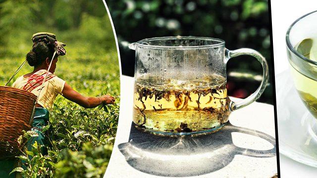 5 deliciosos té de la India que agregan sabor a tu cocina y salud a tu cuerpo y mente