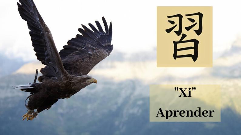 "Xi, el caracter chino para ""Aprender"". (chrisrobbins950/Pixabay)"