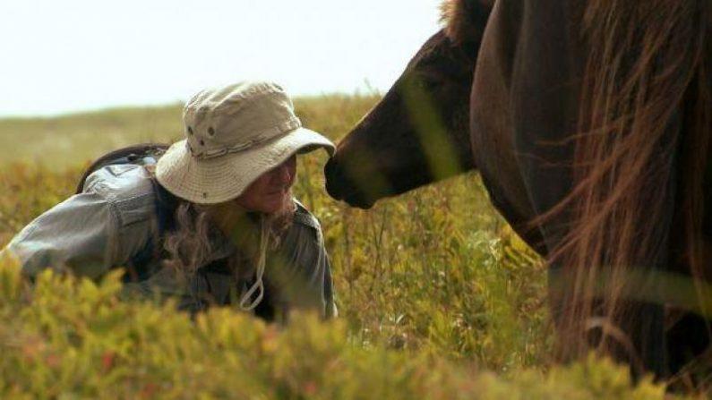 Vive sola en una isla con 400 caballos salvajes