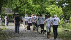 Perros y gatos violentos evitan la eutanasia ayudándose mutuamente con los internos de una prisión