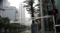 Un museo de Miami instala un sistema contra las inundaciones por huracanes