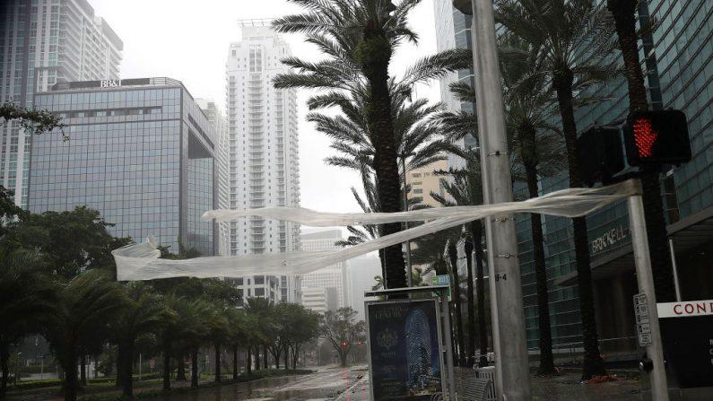 Fuertes vientos soplan a través de la avenida de Brickell ante la inminente llegada del huracán Irma en Miami, la Florida. (Joe Raedle / Getty Images)