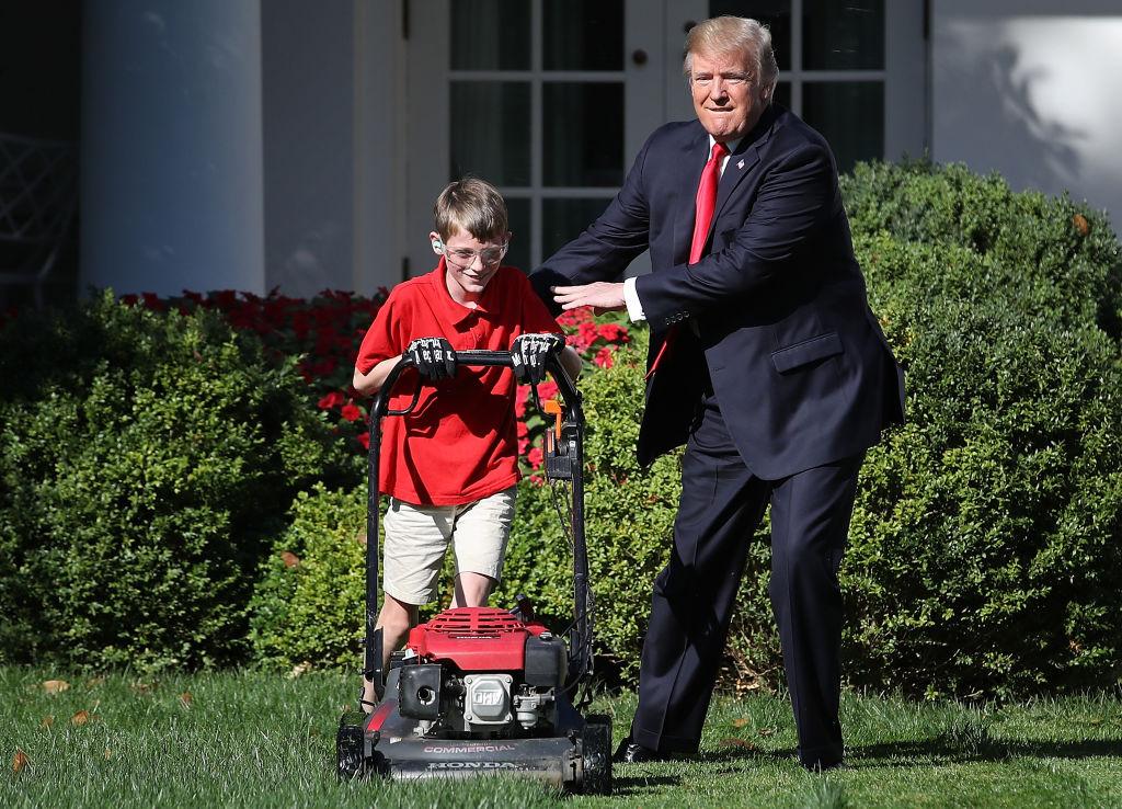 Este peque o jardinero encontr el empleo de su vida en la - El jardinero en casa ...