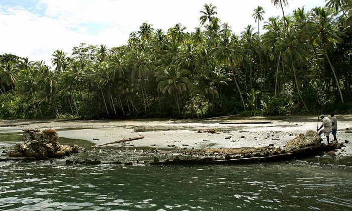 Ranongga Isla de las Islas Salomón. (WILLIAM WEST/AFP/Getty Images)