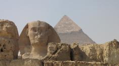 ¿Las pirámides de Egipto estuvieron sumergidas bajo el mar? Polémico fósil puede cambiar la historia