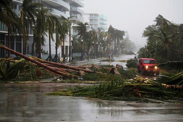Destrozos del huracán Irma en Miami Beach (Foto Joe Raedle/Getty Images)