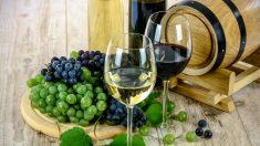 ¿El alcohol es bueno o malo para la salud? Esto dice la medicina china