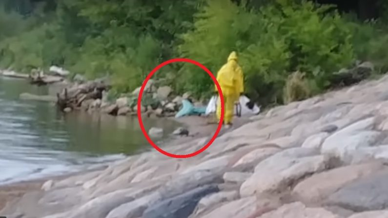 Captan el momento en que retiran a una supuesta sirena en lago de Minnesota