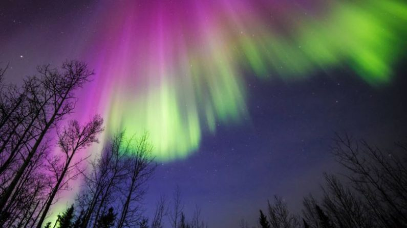 Alaska es uno de los destinos predilectos para observar las auroras boreales, luces danzantes del Norte. (Sebastian Saarloos-NASA)