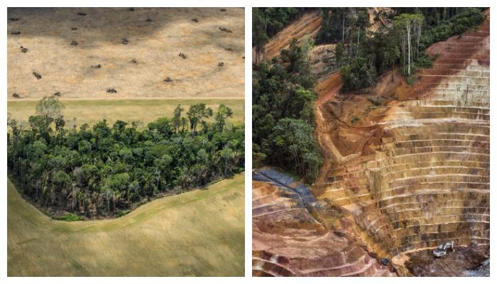 """La """"agonía"""" del Amazonas en 12 impactantes imágenes"""