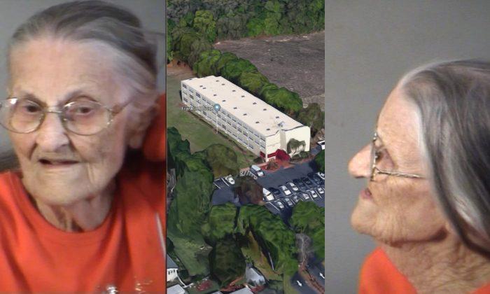 Juanita Fitzgerald casi pasa su 94.˚ cumpleaños en la cárcel tras ser arrestada. (Lake County Sheriff)
