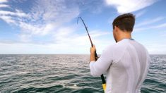 Pescador atrapa un 'pez monstruo' al norte de Noruega y decide comérselo