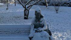 Paramédicos reciben llamada de una mujer cubierta de nieve, al llegar descubren que algo estaba mal
