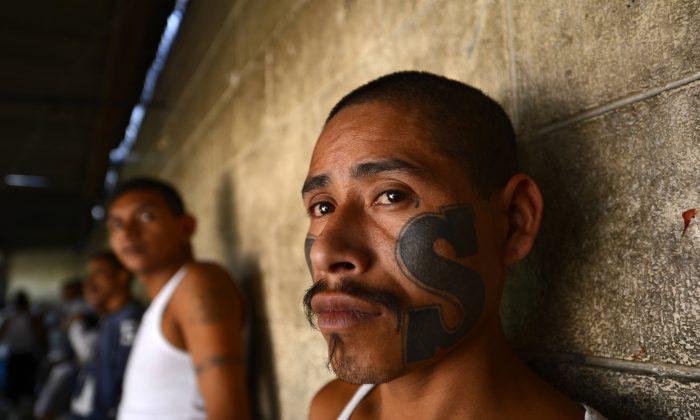 """Miembros de la pandilla """"Mara Salvatrucha"""" (MS13), el lunes 4 de marzo de 2013 en el Centro Penal de Ciudad Barrios en El Salvador. (Marvin RECINOS / AFP / Getty Images)"""