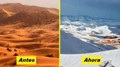 Milagro de la naturaleza: ¡la nieve ha caído en el abrasador desierto del Sahara después de 40 años!