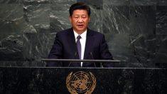 La enorme responsabilidad histórica de Xi Jinping: colocar a China bajo la jurisdicción de la Corte Penal Internacional