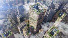 Ya está aprobado el proyecto para construir el rascacielos de madera más alto del mundo