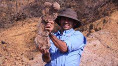 El único paleontólogo que no se ha ido por la grave crisis de Venezuela: ¡sigue encontrando fósiles!