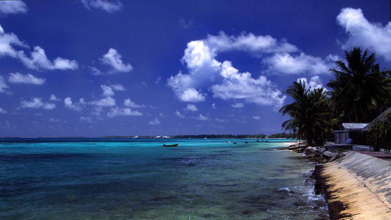 Estas islas son sorprendentes, en vez de hundirse por el alza del mar están creciendo