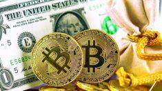 Bitcoin: Entre el gobierno y la competencia