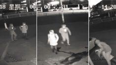 2 inexpertos ladrones intentan robar en un local pero su torpeza les arruina el plan