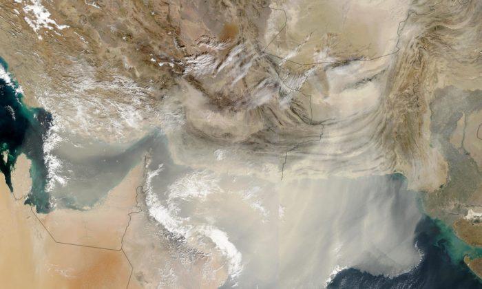 Imagen de satelite dónde se observa una tormenta de polvo que arroja grandes cantidades de polvo sobre el Golfo Pérsico y el Mar Arábigo el sábado, 13 de diciembre de 2003. Los virus pueden viajar miles de millas montados en partículas de polvo y vapor de agua. (NASA)