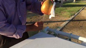Parece que este hombre está pelando un mango, ¡pero se pone emocionante cuando saca su cuchillo!