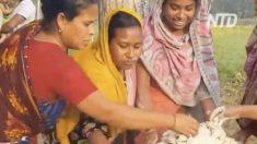 Mujeres raspan el interior de los cocos y lo que hacen con ellos; se me hace agua la boca