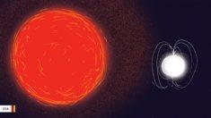 Científicos captan cómo una gigante roja revive una estrella zombi muerta