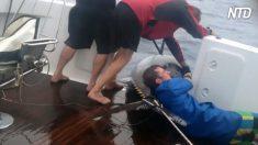 Pescadores luchan por enrollar a