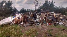 Quedan varados cuando su auto se descompone, luego ven algo perturbador en una montaña de basura