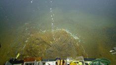 Alerta Naranja: Volcán submarino en el Caribe podría entrar en erupción muy pronto