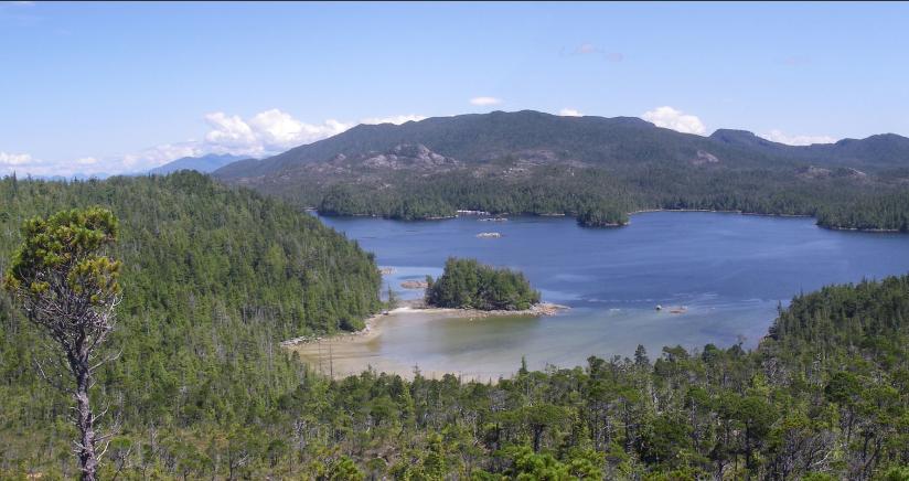 Canadá: hallan pisadas humanas de hace más de 13 mil años
