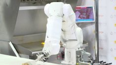 Flippy, la robot que hace hamburguesas en un restaurante no lo logró y fue desconectada
