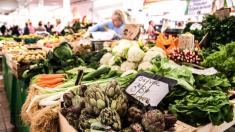 La tienda de comestibles recibe visita inesperada: entérate por qué nadie tuvo el corazón para echarlo
