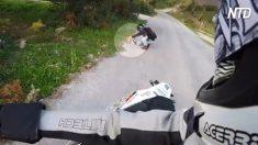 Paseo de motociclistas es interrumpido por camada de gatos. Cuando se acercan, corren al veterinario