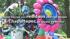 México: Chapultepec se adorna con flores creadas por Dambo y su arte del reciclaje