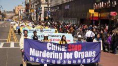 Tras 19 años, en Nueva York recuerdan histórica apelación del 25 de abril en China