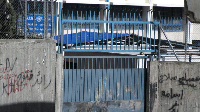 Una foto muestra un gato en las afueras de una cárcel. FOTOGRAFÍA AFP / JAAFAR ASHTIYEH (En la foto se debe leer JAAFAR ASHTIYEH/AFP/Getty Images)