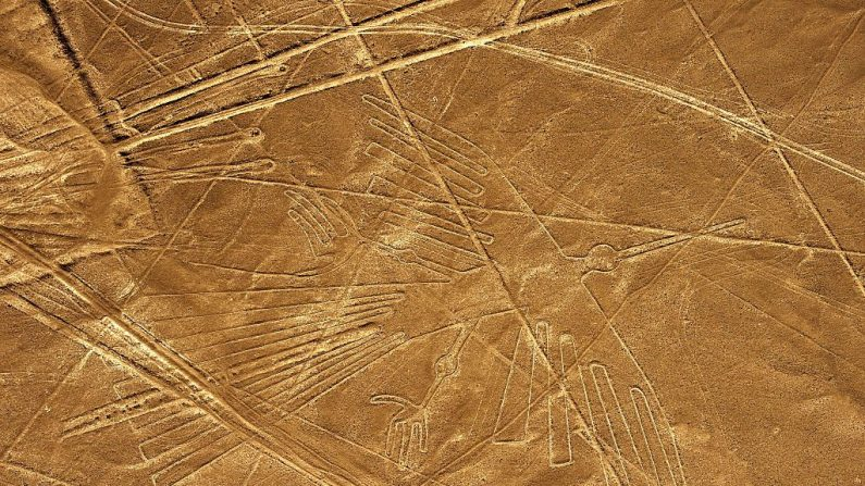 Perú: descubren 50 nuevas líneas en el desierto de Nazca
