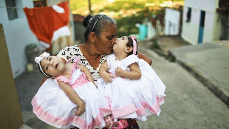 La abuela María José sostiene a sus nietas gemelas Heloisa y Heloa Barbosa, ambas nacidas con microcefalia, los médicos ahora califican la afección general como síndrome de Zika congénito. Científicos de EEUU logran evitar contagio de zika en madres pero no en fetos. (Foto de Mario Tama/Getty Images)